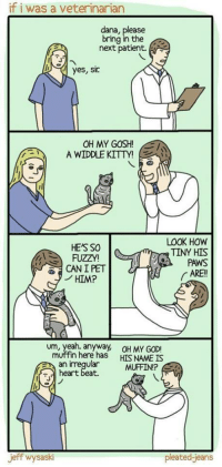 """God, Oh My God, and Yeah: if i was a veterinarian  dana, please  bring in the  next patient.  o  yes, sic  OH MY GOSH!E  A WIDDLE KITTY!  LOOK HOW  TINY HIS  PAWSs  ARE!  HE'S SO  FUZZY  CAN I PET  ノHIM?  um, yeah. anyway,  OH MY GOD!  n here has HIS NAME IS  an irreqular  heart beat.  MUFFINP  jeff wysaski  pleated jeans <p>If I were a vet via /r/wholesomememes <a href=""""http://ift.tt/2qD022u"""">http://ift.tt/2qD022u</a></p>"""