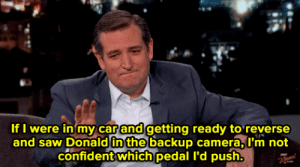 Saw, Target, and Ted: If I were in my car and getting ready to reverse  and saw Donald in the backup camera, L'm not  confident which pedal I'd push. sullengirlalmlghty:  alternativetrump: Remember that time Ted Cruz straight up said he'd murder Trump   #i mean#he's killed before so