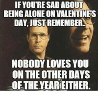 valentines day memes: IF IF YOURE SAD ABOUT  BEING ALONE ON VALENTINES  DAY, JUST REMEMBER  NOBODY LOVES YOU  ON THE OTHER DAYS  OFTHE YEARIE THER.