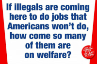 Illegals: If illegals are coming  here to do jobs that  Americans won't do,  how come so many  of them are  on welfare?  JOIN US  FACEBOOK  STOP  HILLARY  IN 2016