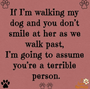 Love, Memes, and Smile: If I'm walking my  dog and you don't  smile at her as we  walk past,  I'm going to assume  you're a terrible  person.  Love  nimalo If I'm walking my dog and you don't smile at her as we walk past, I'm going to assume you're a terrible person. Who else feels this way ???????