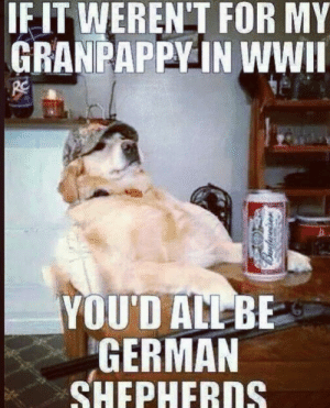 Memorial Day Weekend Vibes: IF IT WEREN'T FOR MY  GRANPAPPY IN WWII  YOU'D ALL BE  GERMAN  SHEPHERDS Memorial Day Weekend Vibes