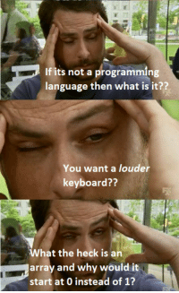 My experience with non programming roommates: If its not a programming  language then what is it??  You want a louder  keyboard??  What the heck is an  array and why would it  start at 0 instead of 1? My experience with non programming roommates