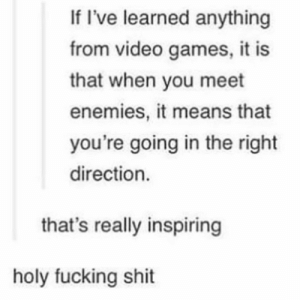 Fucking, Shit, and Video Games: If I've learned anything  from video games, it is  that when you meet  enemies, it means that  you're going in the right  direction.  that's really inspiring  holy fucking shit Hard path