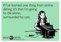 MISS T: If I've learned one thing from online  dating, it's that I'm going  to die alone,  surrounded by cats  cards  your  cards.com MISS T