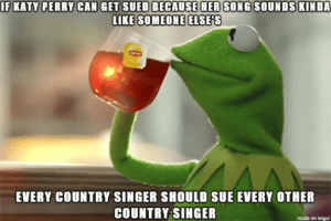 just a thought: IF KATY PERRY CAN GET SUED BECAUSE HER SONG SOUNDS KINDA  LIKE SOMEONE ELSE'S  EVERY COUNTRY SINGER SHOULD SUE EVERY OTHER  COUNTRY SINGER  made on imgur just a thought