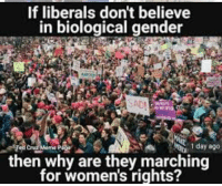 Memes, 🤖, and Gender: If liberals don't believe  in biological gender  1 day ago  then why are they marching  for women's rights? (GC)
