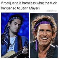 John Mayer, Memes, and Fuck: If marijuana is harmless what the fuck  happened to John Mayer?  drgrayfang Tragic 😭 @drgrayfang