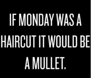 Dank, Haircut, and Monday: IF MONDAY WASA  HAIRCUT IT WOULD BE  A MULLET
