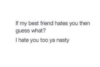 Best Friend, Memes, and Nasty: If my best friend hates you then  guess what?  I hate you too ya nasty