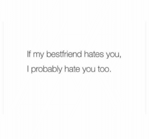 My Bestfriend: If my bestfriend hates you,  I probably hate you too.