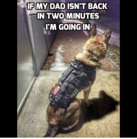 Good for You, Memes, and Police: IF MY DAD ISN'T BACK  IN TWO MINUTES  IM GOING IN @police_fitness is one is good for you!