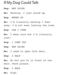 Up Dog: If My Dog Could Talk  Dog: WAT DOING  Me: Nothing. I just stood up.  Dog: WHERE GO  Me: I'm literally walking 3 feet  away. I 'm not even leaving the room.  Dog: CAN I COME  Me: I mean sure but I'm literally  just-  Dog: I COME TOO  Dog: WAT DOING  Me: I need to open this door  Dog: I HALP  Me: No but you're in front of the  door. Move please.  Dog: I HALP  Me: Sigh.