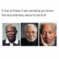 Af, Funny, and Lit: If one of these 3 are narrating you know  the documentary about to be lit af  IG: The Funny ntrovert Raally lit