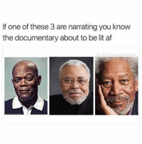 Af, Facts, and Lit: If one of these 3 are narrating you know  the documentary about to be lit af Facts 😂😂😂😂💯 pettypost pettyastheycome straightclownin hegotjokes jokesfordays itsjustjokespeople itsfunnytome funnyisfunny randomhumor samuelljackson jamesearljones morganfreeman