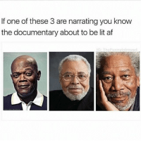 Af, Ironic, and Lit: If one of these 3 are narrating you know  the documentary about to be lit af  IG: The Fun nylntrovert Morgan is best