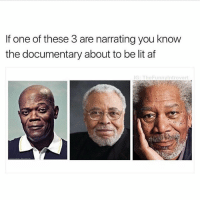 Af, Ironic, and Lit: If one of these 3 are narrating you know  the documentary about to be  lit af  G: TheFunnyIntrovert Fact