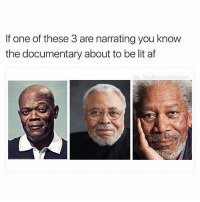 Af, Lit, and Memes: If one of these 3 are narrating you know  the documentary about to be lit af  G: TheFunnylntrover So true (@thefunnyintrovert)