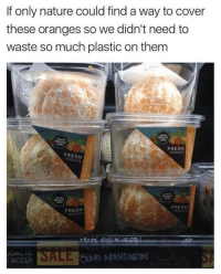 @theladbible never fails to impress with the funniest content 😂: If only nature could find a way to cover  these oranges so we didn't need to  waste so much plastic on them  RIGHT  MEME  RIGHT  FRESH  PRODUCE  FRESH  MAN  RIGHT  MADE  RIGHT  FRESH  FRESH  SALE MANDARIN  ACCU @theladbible never fails to impress with the funniest content 😂