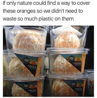 Dank, Fresh, and Funny: If only nature could find a way to cover  these oranges so we didn't need to  waste so much plastic on them  RIGHT  FRESH  PRODUCE  FRESH  FRESH  FRESH Such a waste * 😏Follow if you're new😏 * 👇Tag some homies👇 * ❤Leave a like for Dank Memes❤ * Second meme acc: @cptmemes * Don't mind these 👇👇 Memes DankMemes Videos DankVideos RelatableMemes RelatableVideos Funny FunnyMemes memesdailybestmemesdaily boii Codmemes orange plastic Meme InfiniteWarfare Gaming gta5 bo2 IW mw2 Xbox Ps4 Psn Games VideoGames Comedy Treyarch sidemen sdmn