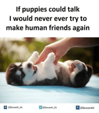 Never Ever: If puppies could talk  I would never ever try to  make human friends again  If @sarcastic Us  @sarcastic Us  @Sarcasmlol