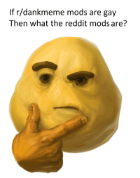If r/dankmeme mods are gay  Then what the reddit mods are?