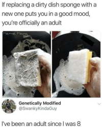 Mood, Dirty, and Dish: If replacing a dirty dish sponge with a  new one puts you in a good mood,  you're officially an adult  Mene Man  Genetically Modified  @SwankyKindaGuy  I've been an adult since l was 8