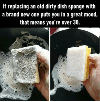 9gag, Memes, and Mood: If replacing an old dirty dish sponge with  a brand new one puts you in a great mood,  that means you're over 30. A squeaky clean victory. Follow @9gag