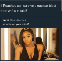 Funny, Wtf, and Yo: If Roaches can survive a nuclear blast  then wtf is in raid?  cardi @cardikordeii  what is on your mind? Yo 😂😂😂😮
