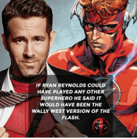 Memes, Superhero, and Deadpool: IF RYAN REYNOLDS COULD  HAVE PLAYED ANY OTHER  SUPERHERO HE SAID IT  WOULD HAVE BEEN THE  WALLY WEST VERSION OF THE  FLASH.  DEADROL  FACT 😄 • • • • Follow @deadpoolfacts for your daily Deadpool dose. 👇👇👇👇 SDCC2018 deadpool2 ryanreynolds xforce mcu infinitywar comiccon deadpool marvel theflash