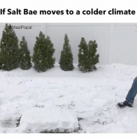 Funny, Salt, and Asis: If Salt Bae moves to a colder climate  asi Popal Entire East Coast today ❄️ (Music- YouTube Kevin MacLeod )