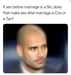 Marriage, Meme, and Sex: if sex before marriage is a Sin, does  that make sex after marriage a Cos or  a Tan? Higher IQ meme