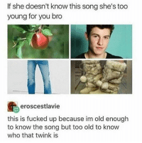Dude, Meme, and Memes: If she doesn't know this song she's too  young for you bro  島eroscestlavie  this is fucked up because im old enough  to know the song but too old to know  who that twink is what compelled someone to make tje meme though this is tje first ive seen with someone who ive never seen shippef with another dude. Ive seen phan, larry, esak, connor-troye, troye-tyler, etc. -papa