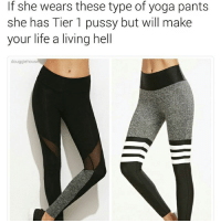 Life, Memes, and Pussy: If she wears these type of yoga pants  she has Tier 1 pussy but will make  your life a living hell  douggiehous Is it worth it? Sometimes.
