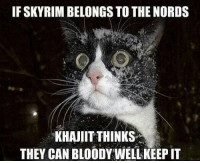 Someone get the Khajiit some cloths 😂😂  #ArchMage: IF SKYRIM BELONGS TO THE NORDS  KHAJIIT THINKS  THEY CAN BLOODY WELL KEEPIT Someone get the Khajiit some cloths 😂😂  #ArchMage