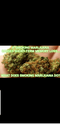 Marijuana: IF SMOKING MARIJUANA  CAUSES SHORT TERM MEMORY LOSS.  WHAT DOES SMOKING MARIJUANA D0?