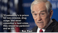 """Ron Paul: """"If somebody's in prison  for non-violence, drug  usage, and never  committed a hard crime,  they should be pardoned  and let out  Ron Paul"""