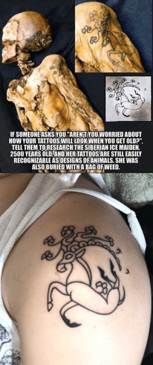 """Ass, Tattoos, and Tumblr: IF SOMEONE ASKS YOU """"AREN'T YOU WORRIED ABOUT  HOW YOUR TATTOOS WILL LOOK WHEN YOU GET OLD?""""  TELL THEM TORESEARCH THE SIBERIAN ICE MAIDEN.  2500 YEARS OLD,ANDHER TATTOOS ARE STILL EASILY  RECOGNIZABLE ASDESIGNS OFANIMALS. SHE WAS  ALSO BURIED WITHA BAG OFWEED.  10 flavoracle: sarahthewonderfilled:  Got this sweet ass tattoo today 😎  Quick friendly suggestion: If somebody ever offers you a ride in a time machine, politely but firmly say NO. (Especially if they also offer you a bag of weed.)"""
