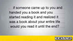 Life, Tumblr, and Blog: if someone came up to you and  handed you a book and you  started reading it and realized it  was a book about your entire life  would you read it until the end?  THE META PICTURE srsfunny:The Book About Your Entire Life