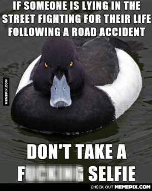 To the idiot I saw on the way to work this morningomg-humor.tumblr.com: IF SOMEONE IS LYING IN THE  STREET FIGHTING FOR THEIR LIFE  FOLLOWING A ROAD ACCIDENT  DON'T TAKE A  FUCKING SELFIE  CHECK OUT MEMEPIX.COM  MEMEPIX.COM To the idiot I saw on the way to work this morningomg-humor.tumblr.com