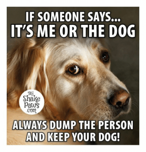 Very good advice!: IF SOMEONE  IT'S ME OR THE D0G  SAYS..  BY  Shake  paws  com  ALWAYS DUMP THE PERSON  AND KEEP YOUR DOG Very good advice!