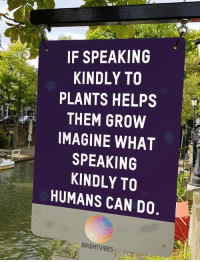 Helps, Nice, and Can: IF SPEAKING  KINDLY TO  PLANTS HELPS  THEM GROW  IMAGINE WHAT  SPEAKING  KINDLY TO  HUMANS CAN DO  BRIGHTVIBES Be nice to everybody