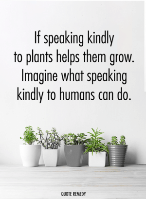 Memes, Helps, and 🤖: If speaking kindly  to plants helps them grow  Imagine what speaking  kindly to humans can do.  QUOTE REMEDY