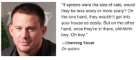 "Memes, Spider, and Channing Tatum: ""If spiders were the size of cats, would  they be less scary or more scary? On  the one hand, they wouldn't get into  your house as easily. But on the other  hand, once they're in there, ohhhhhh  boy. Oh boy.""  Channing Tatum  On spiders He's such a philosopher"