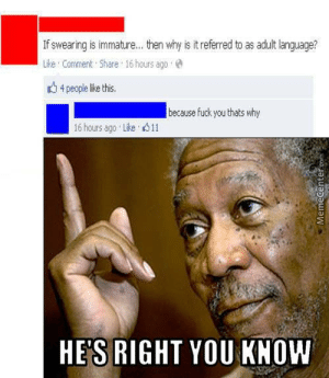 Adult Humor Memes. Best Collection of Funny Adult Humor Pictures: If swearing is immature... then why is it referred to as adult language?  Like Comment Share 16 hours agoe  t4 people lke this.  because fuck you thats why  16 hours ago . Like  11  HE'S RIGHT YOU KNOW Adult Humor Memes. Best Collection of Funny Adult Humor Pictures
