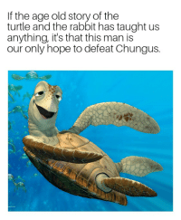 Turtle: If the age old story of the  turtle and the rabbit has taught us  anything, it's that this man is  our only hope to defeat Chungus.