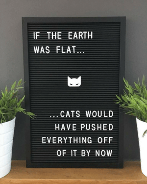 Earth shattering facts by Austinrains502 MORE MEMES: IF THE EARTH  WAS FLAT...  .. CATS WOULD  HAVE PUSHED  EVERYTHING OFF  0F IT BY NOW Earth shattering facts by Austinrains502 MORE MEMES