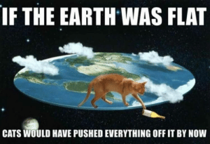 Funny Memes Of The Day 26 Pics: IF THE EARTH WAS FLAT  CATS WOULD HAVE PUSHED EVERYTHING OFF IT BY NOW Funny Memes Of The Day 26 Pics