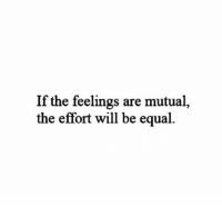 Equalism: If the feelings are mutual,  the effort will be equal