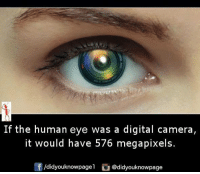 human eyes: If the human eye was a digital camera  it would have 576 megapixels.  /didyouknowpagel  @didyouknowpage